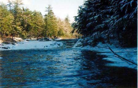 Mills Falls: Kejimkujik